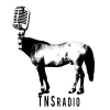 S3 Episode 50 – TNS Radio Punk Podcast